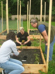 Andrea Hamley and Heather Wahl are hard at work gardening.