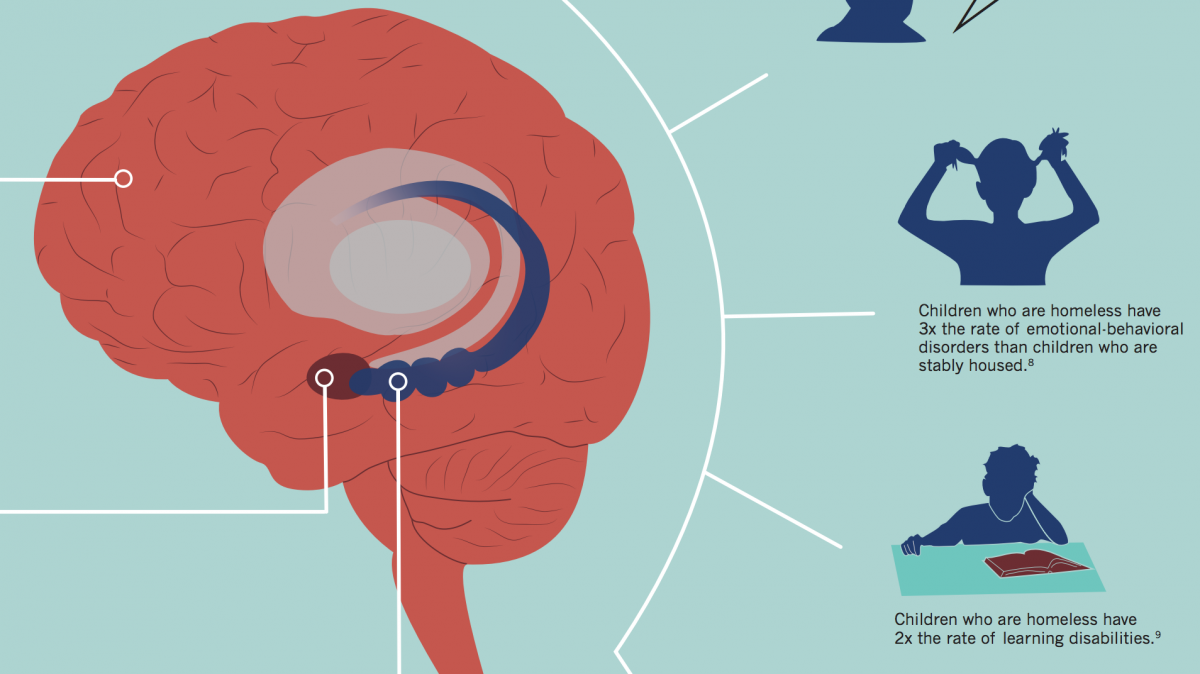 "Here is a portion of our new infographic, ""The Big Brain."" If you want to see the rest of the infographic, keep reading! Image from the Project on Family Homelessness."