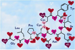 "Oxytocin makes us more empathetic and bonds us to others. That is why it is called the ""love hormone."" Image from http://www.sci-news.com."